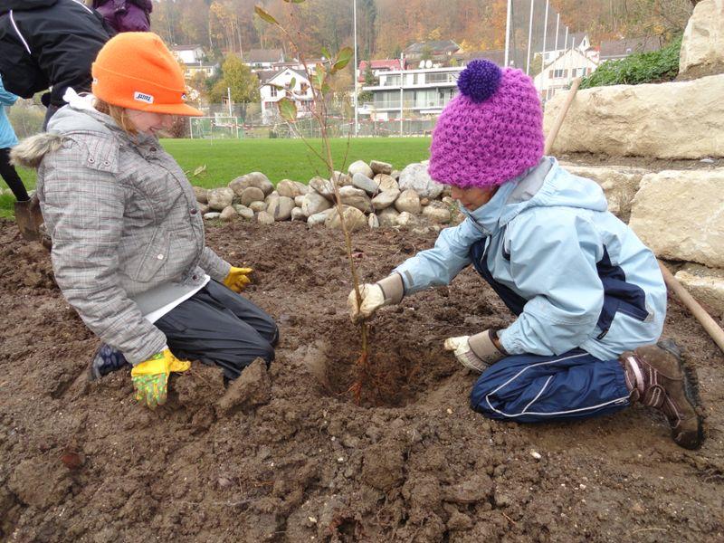 Pflanzaktion im Rahmen der Natur- und Umweltbildung
