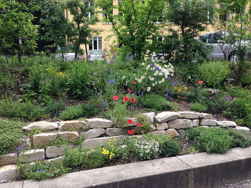Natur findet Stadt - privater Garten Familie Peterhans