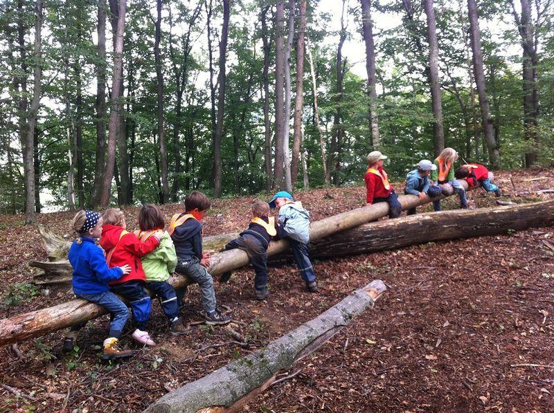 Natur- und Umweltbildung in Baden, Kindergarten